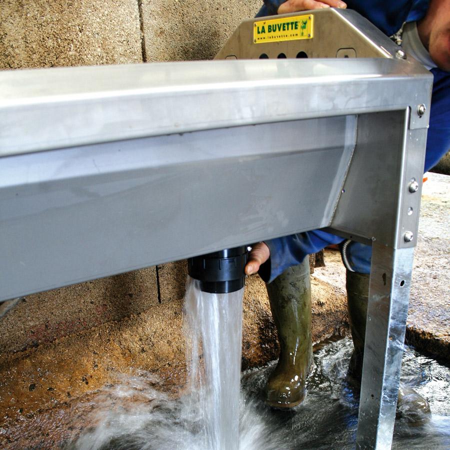 Abreuvoir inox à grande vidange GV300 pour vaches laitières